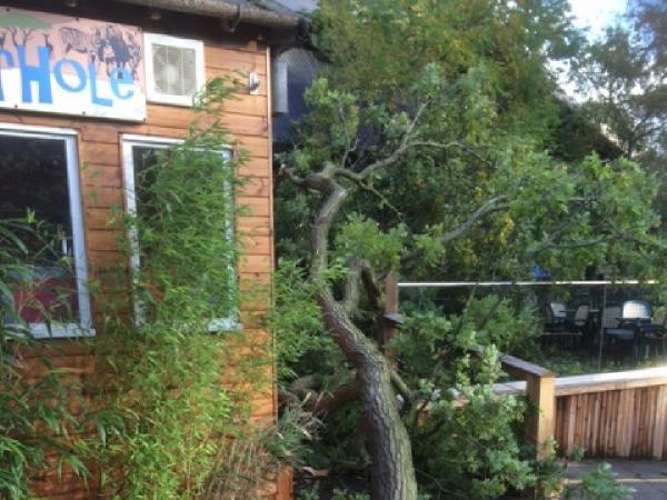 Storm damage affected thousands of people across north Essex.